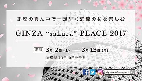 """在银座的中心早一步享受盛开的樱花的""""GINZA""""sakura""""PLACE 2017""""开赛"""
