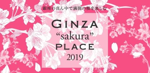 """GINZA""sakura""PLACE 2019""开赛"